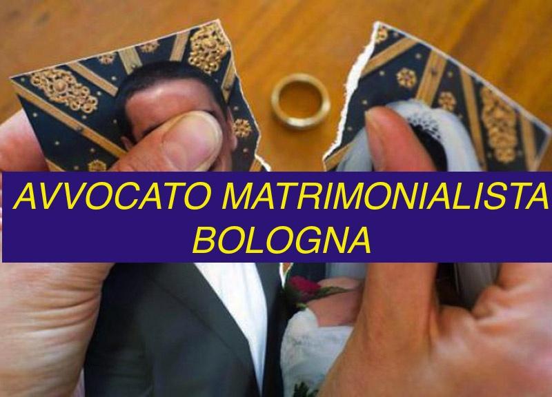 divorzio giudiziale Bologna